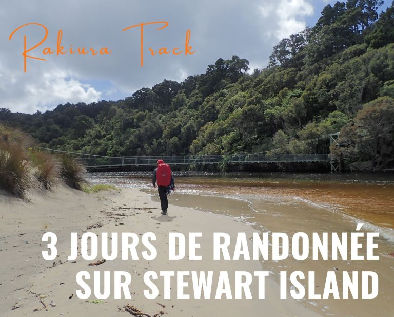 Rakiura Track : 3 jours de randonnée sur Stewart Island