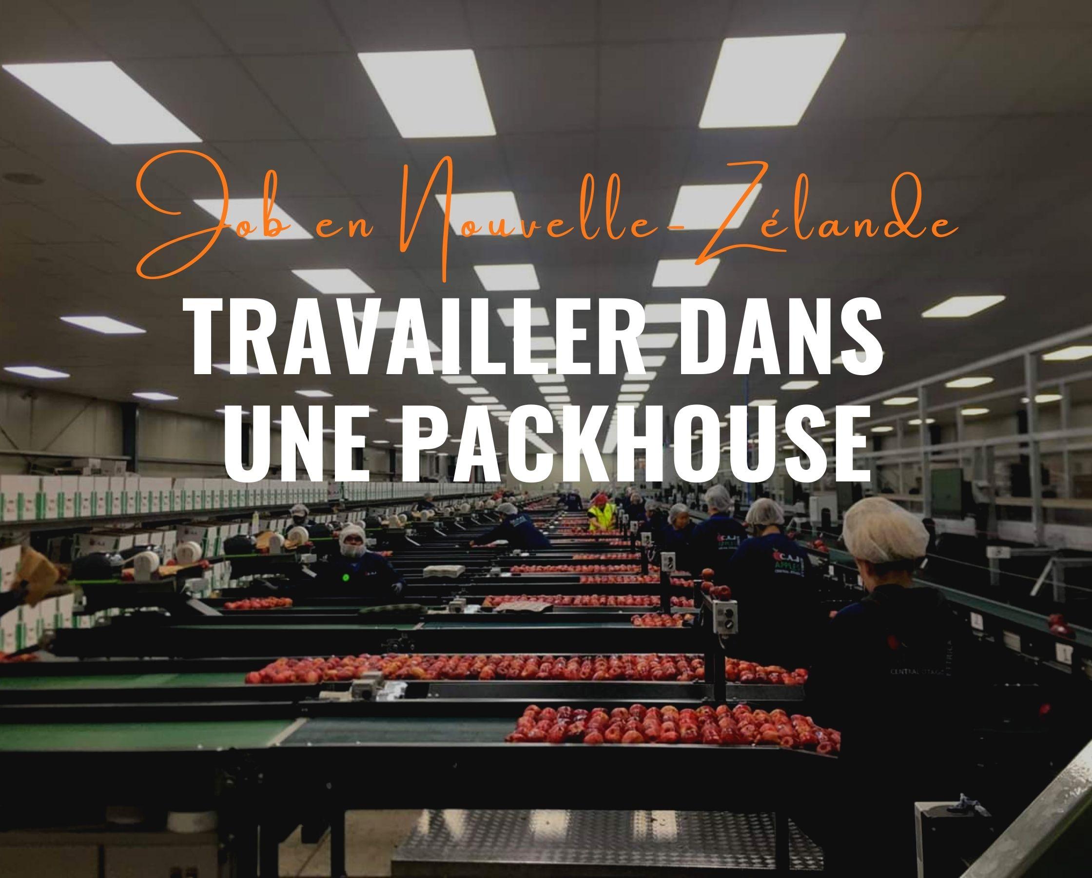 Travailler dans une packhouse en Nouvelle-Zélande