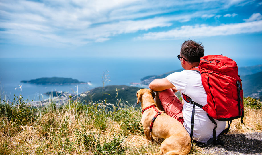 Man Resting On Hike With Dog With Ocean View