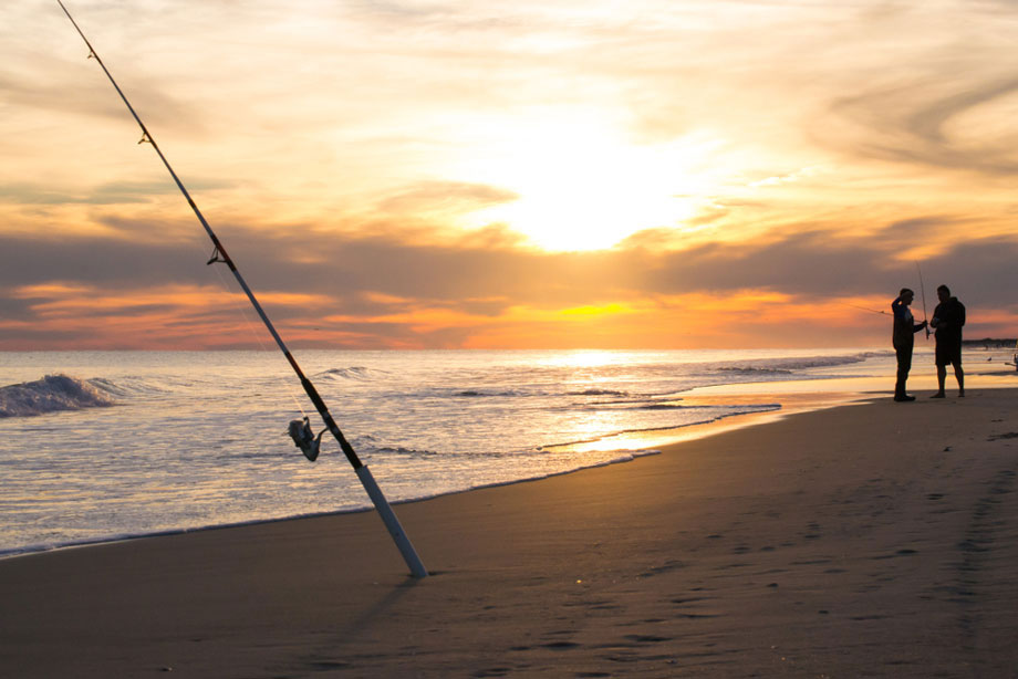 When To Go Surf Fishing
