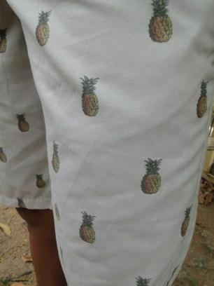 Estampa de abacaxis