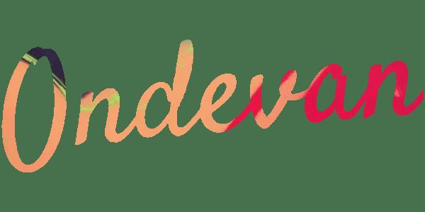 ONDEVAN CAMPERVAN | Camper van for hire| Miami | Orlando|