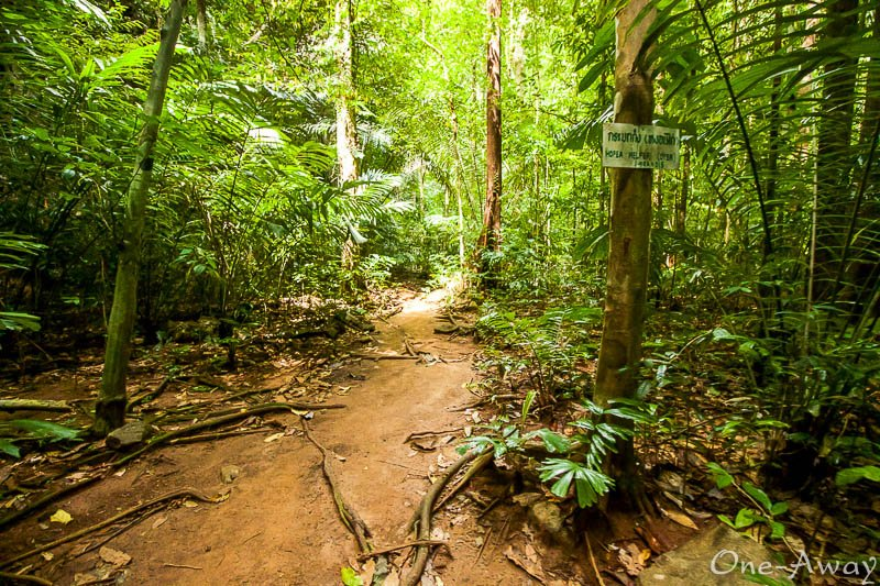 Wat Tham Suea -Tiger Cave Temple Krabi - Jungle Hike