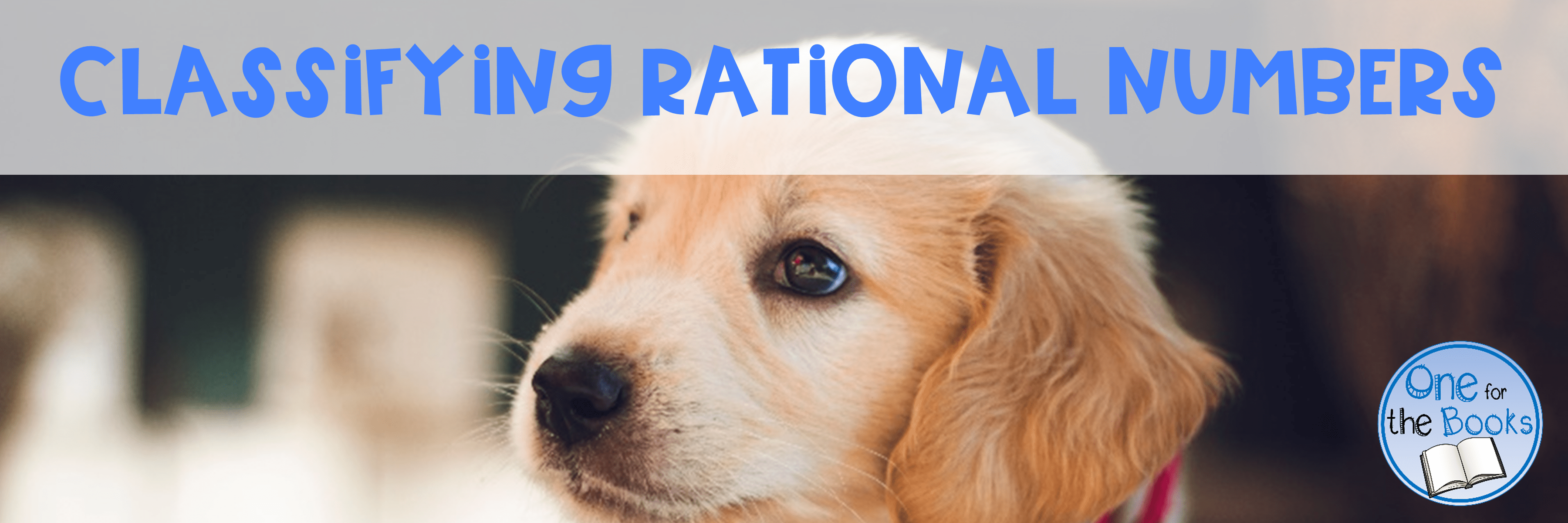 small resolution of Classifying Rational Numbers - One for the Books Rational Numbers
