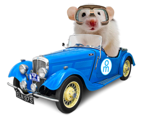 Vehicle Wraps Mouse