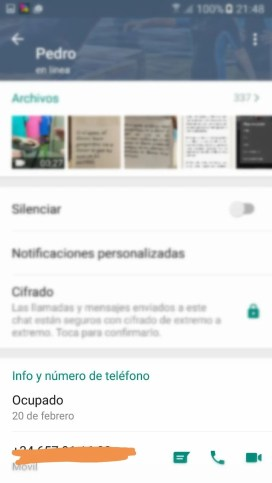 Whatsapp Android Info 2