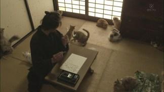 Neko.Samurai.Season2.EP01.720p.HDTV.x264.AAC-DoA.mkv_snapshot_11.11_[2016.01.12_21.46.12]