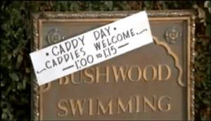 Caddyshack Caddy Pool Day