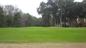 There was considerably more green rye grass on and around Golden Bear than there had been at Palmetto Hall the day before.