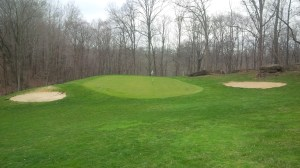 The driveable 16th green rests at the bottom of a ravine, some 75 feet or so below the dogleg left fairway. It was one of the few obvious risk/reward holes at Nevel Meade.