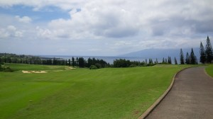 You've got to be a living heart donor to not enjoy being on Kapalua's Plantation Course, no matter how your round golf goes, good or bad.