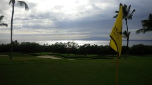 I think I would have been happy with my 8th hole experience due to this view even if I hadn't chipped in to save par.