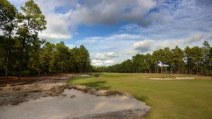 "By removing 40+ acres of turf from the rough and restoring the ""native areas"" of North Carolina's sand hills, Pinehurst No. 2 doesn't look like most American golf courses."