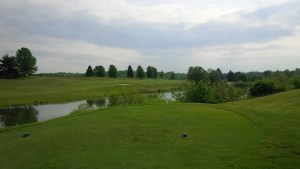 From the 10th tee, it's pick a target and Hope! Birdie and bogey are equally likely.