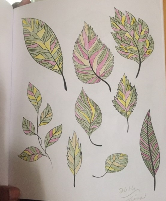 Leaves in a coloring book