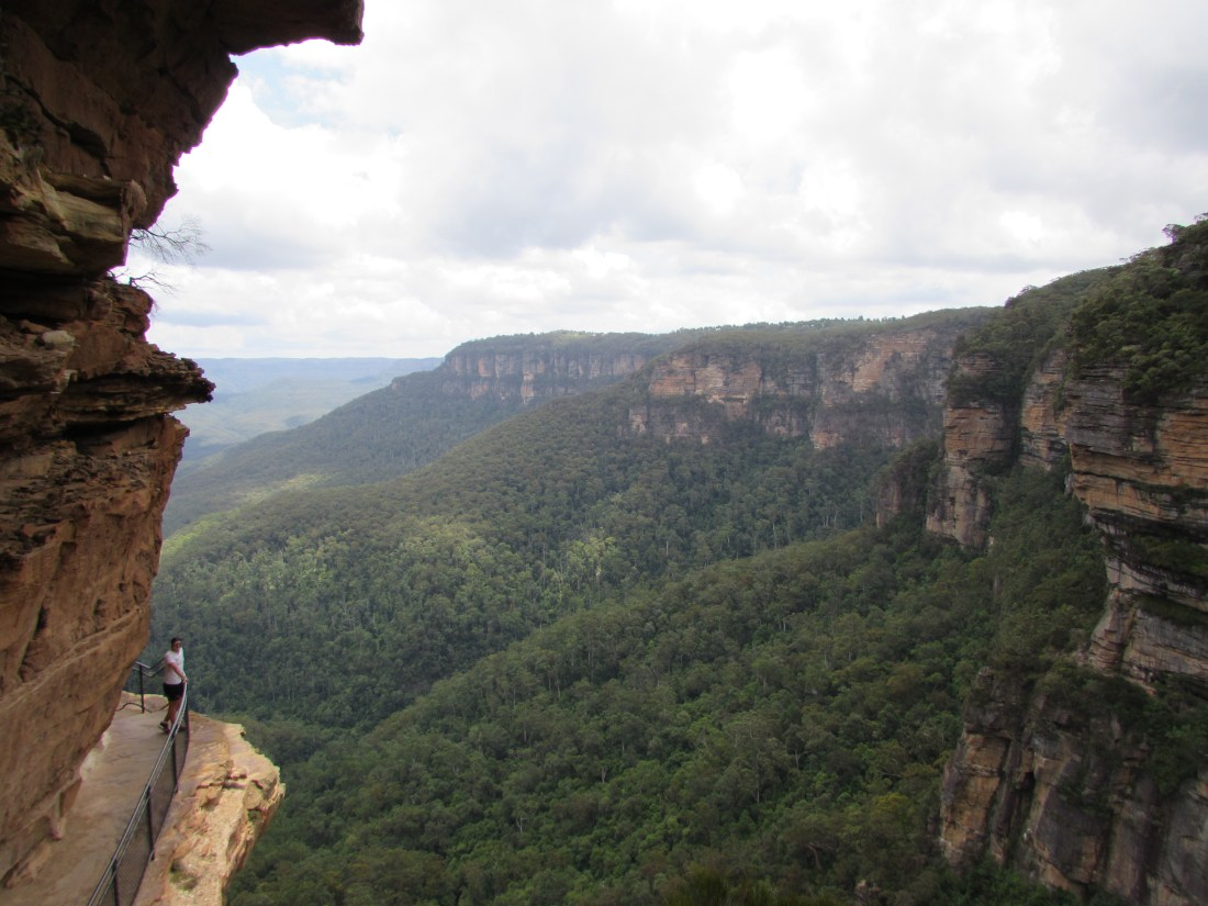 Blue Mountains Viewpoint