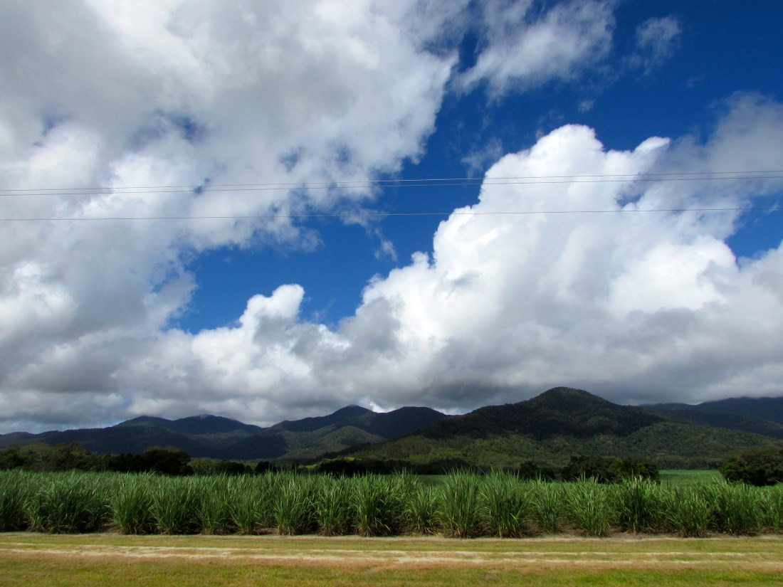 Driving to Cairns, Australia