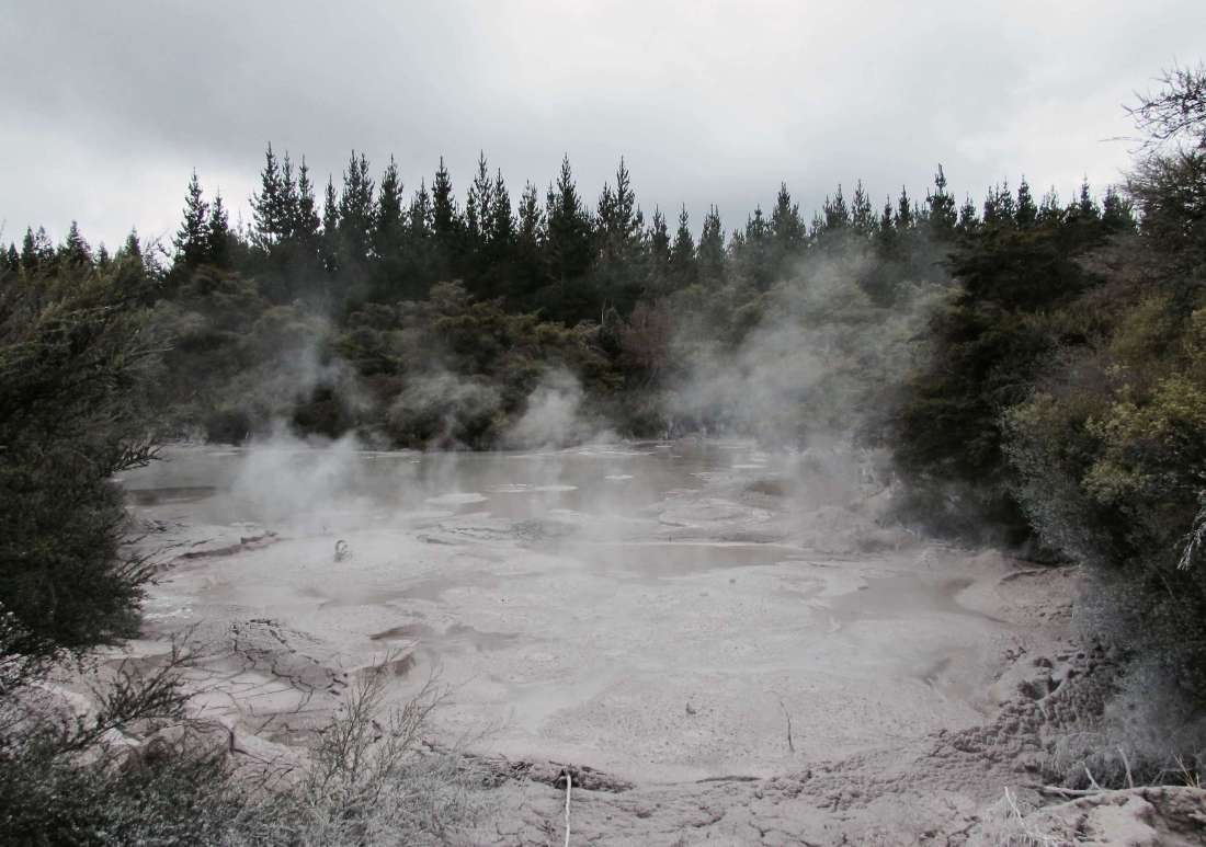 Muddy geothermal activity New Zealand
