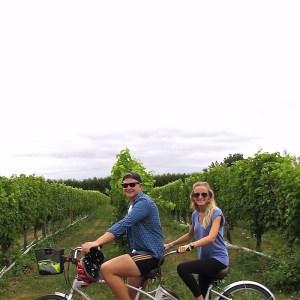 Blenheim Wine Tour Featured Image