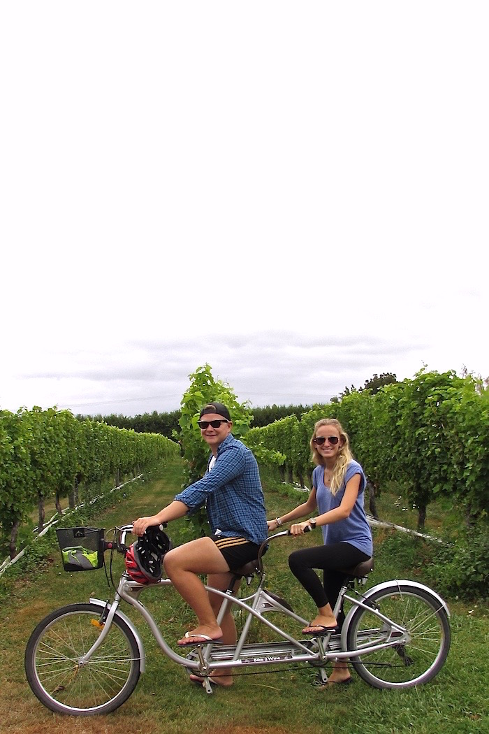 Wine Tasting In Blenheim