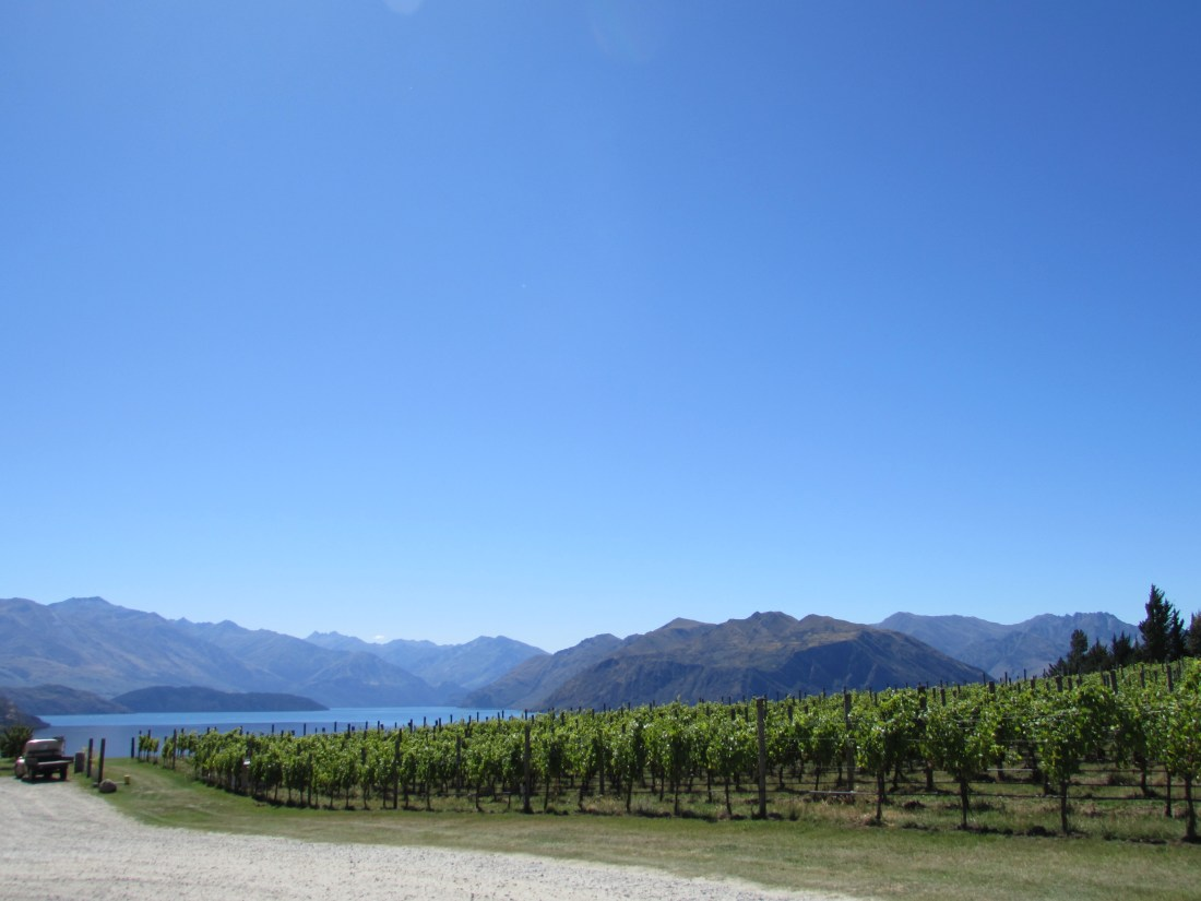 Rippon Winery Grounds, New Zealand