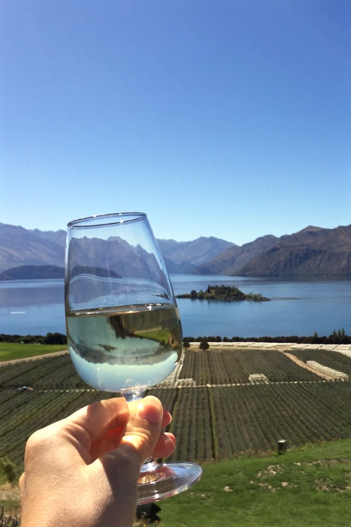 One Fine Day at Rippon Winery, Wanaka