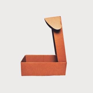 smart shoe box