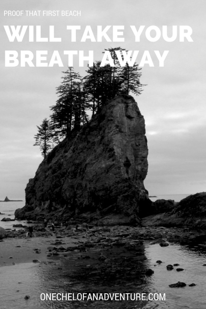 First Beach Washington State