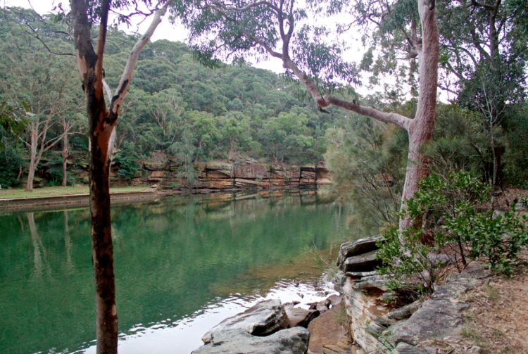 River at Royal National Park
