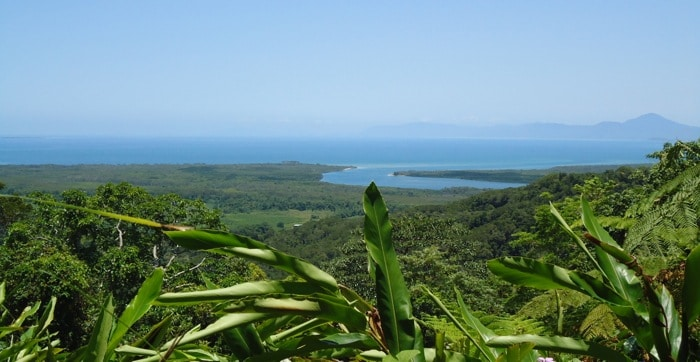 the-view-from-alexandra-lookout-in-the-daintree-rainforest