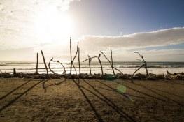 The Perfect 1-Week New Zealand Road Trip with Wild Kiwi