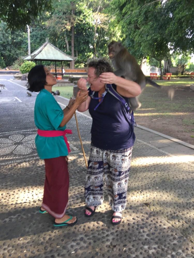 monkey attack at bali monkey forest