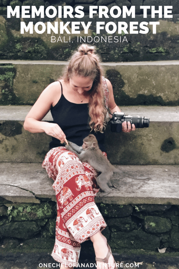 Visiting Monkey Forest in Bali