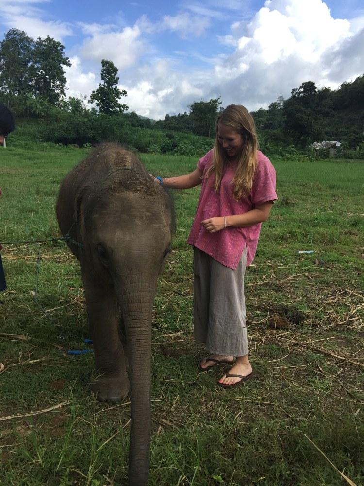 See Elephants Responsibly - baby elephant at Ran-Tong sanctuary