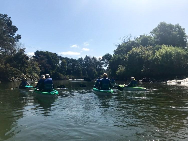 Napa River Kayaking - Downtown 2