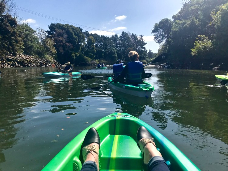 Kayaking tour in Napa