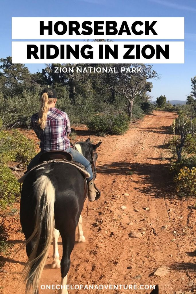 Horseback riding Zion