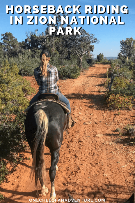 Zion Canyon Horseback Riding at Zion Mountain Ranch | Zion National Park, Utah | What to Do in Zion
