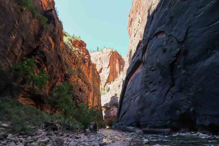 Hiking The Narrows - Zion National Park-6959