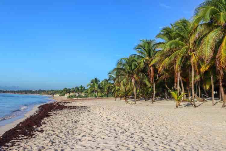 UNICO 20 87 Hotel Riviera Maya Mexico Beach