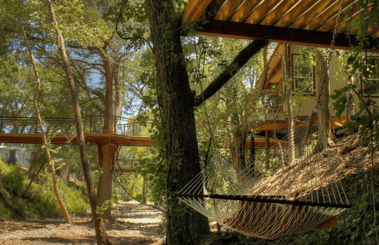 Guadalupe River Tree house​
