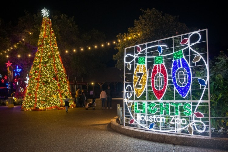 Zoo lights - Christmas in Houston