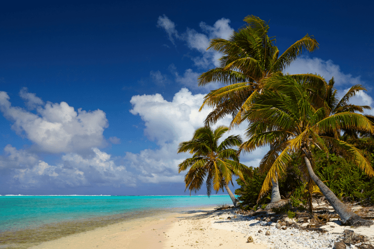 Cook Islands honeymoon