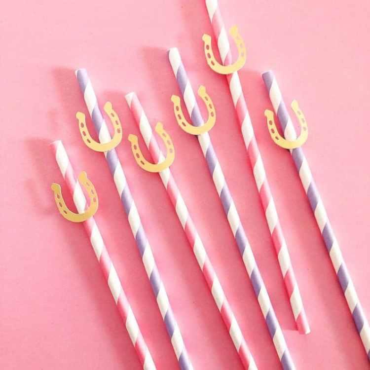 horseshoe straws for western bachelorette party straws