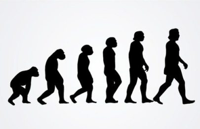Picture of silhouettes of an ape evolving into a human