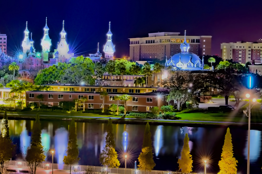 Top 10 Professors at the University of Tampa