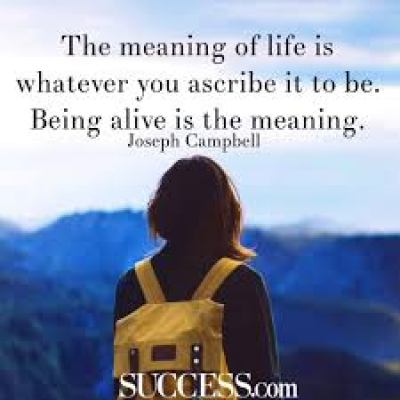 This quote comments on what the meaning of life is.