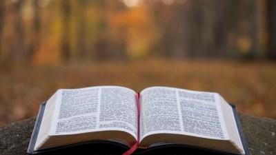 An image of Bible.