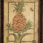 Small Pineapple No. 1
