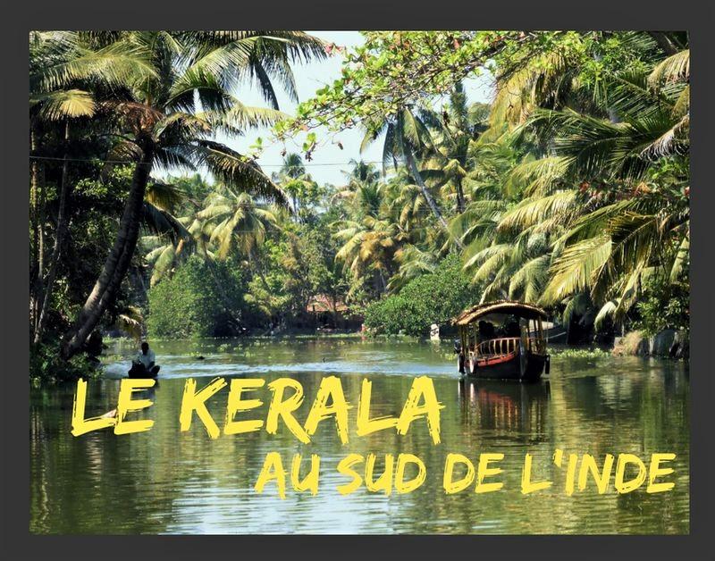 Voyage au Kerala, petit paradis au sud de l'Inde